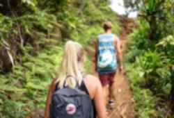 Hiking in the Amazon